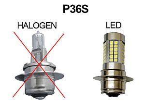 PED 36 S LED 12V, AMPOULE LONGUE PORTEE & FOG