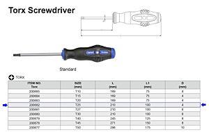 TX SCHROEVENDRAAIER T25 X 100 MM