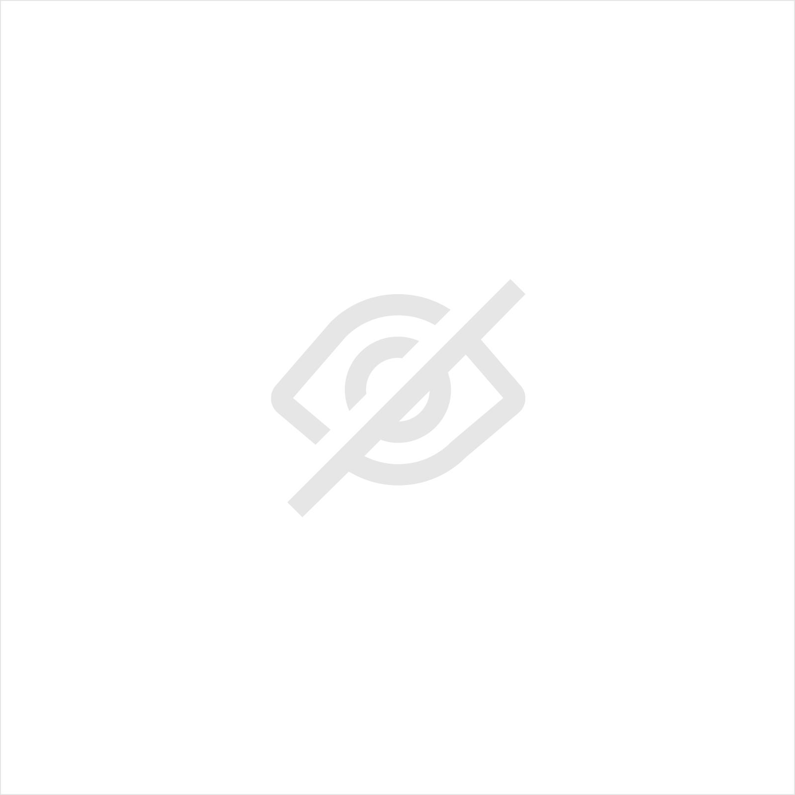 AUTO OPRIJPLAAT ALUMINIUM 2500 x 385 (2 STUKS)